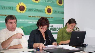 EL CONSEJO ANDALUZ DE LOS VERDES DEFINE EN GRANADA SU NUEVA ESTRATEGIA POLÍTICA