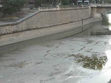 A limpiar el río