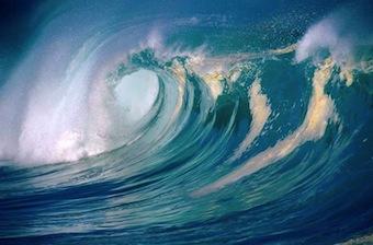Del greenwashing a la ola verde