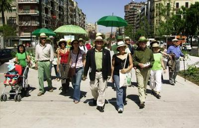 Novecento Verde